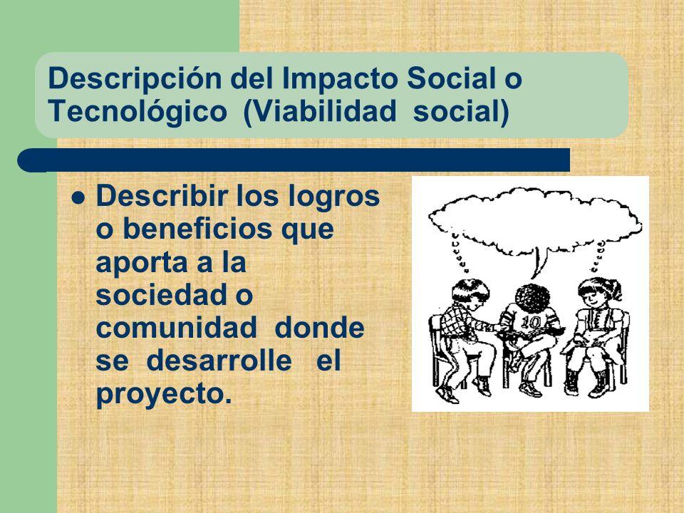 Descripción del Impacto Social o Tecnológico (Viabilidad social)