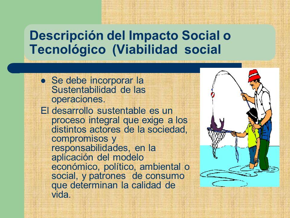 Descripción del Impacto Social o Tecnológico (Viabilidad social