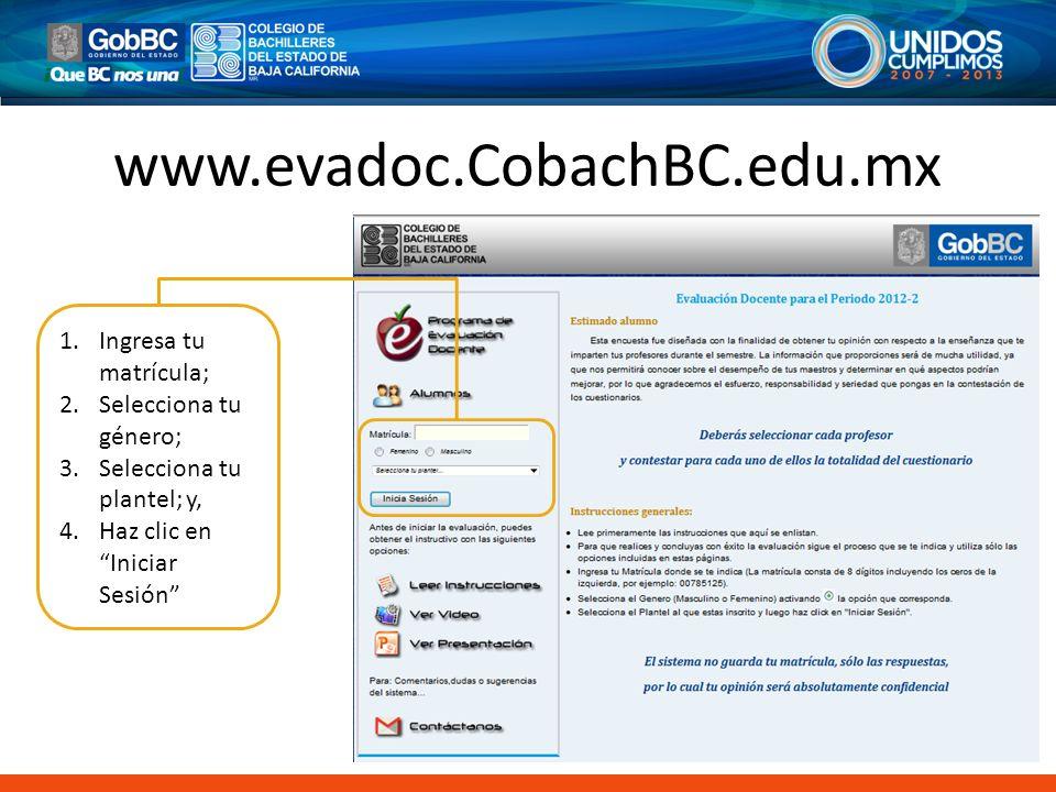 www.evadoc.CobachBC.edu.mx Ingresa tu matrícula; Selecciona tu género;