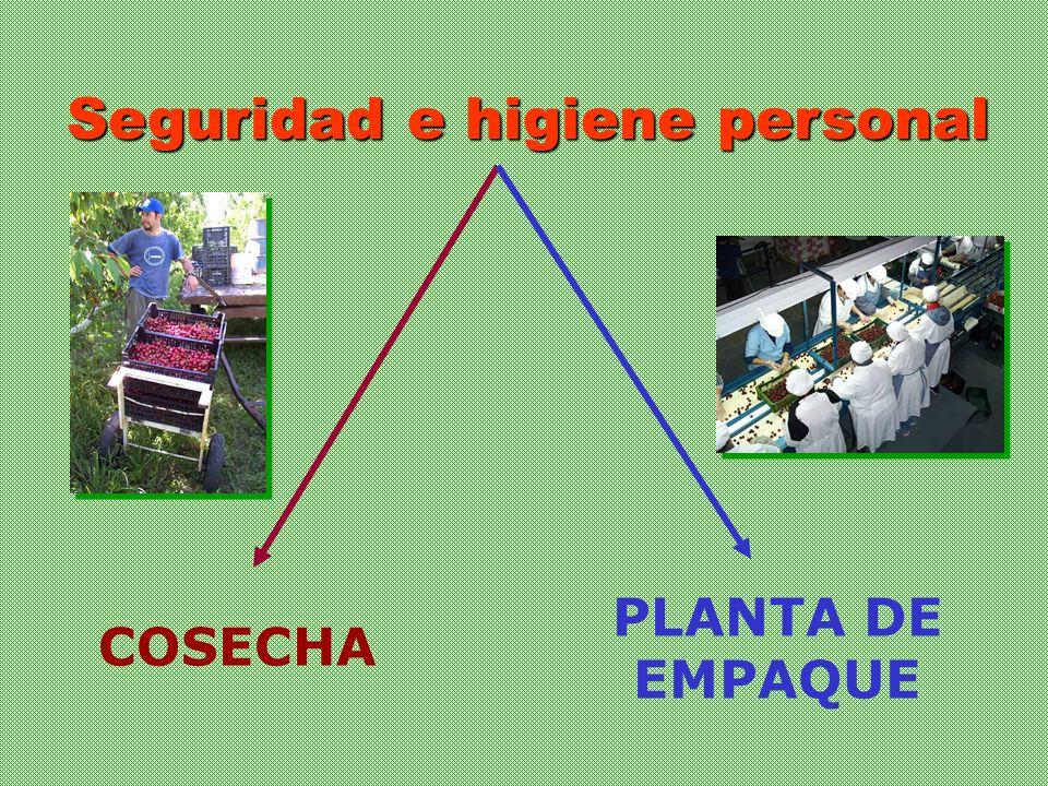 Seguridad e higiene personal