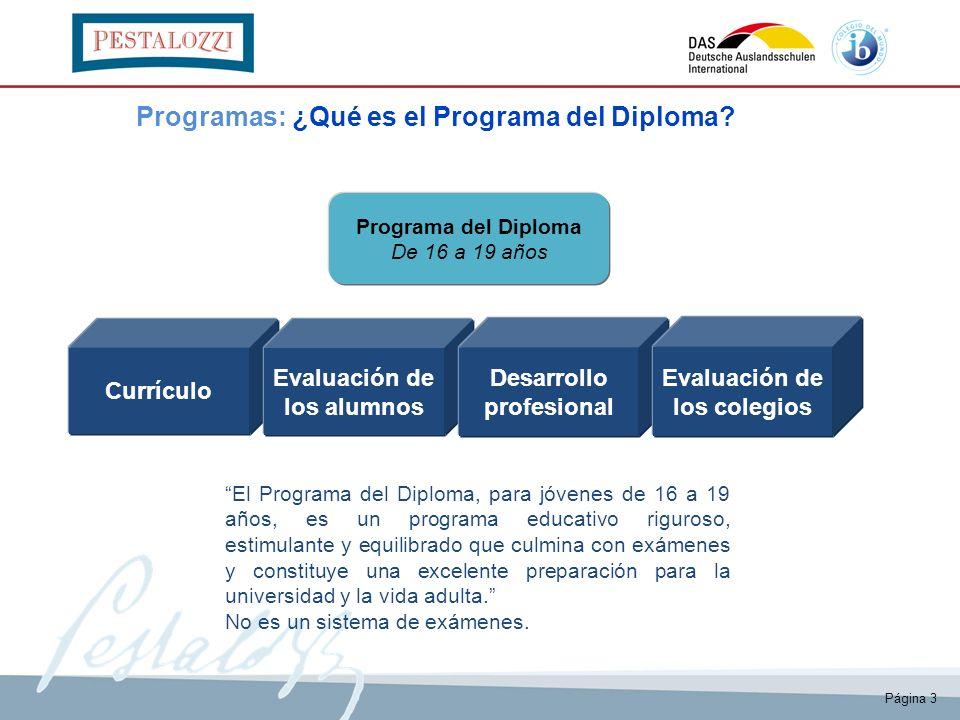 Programas: ¿Qué es el Programa del Diploma