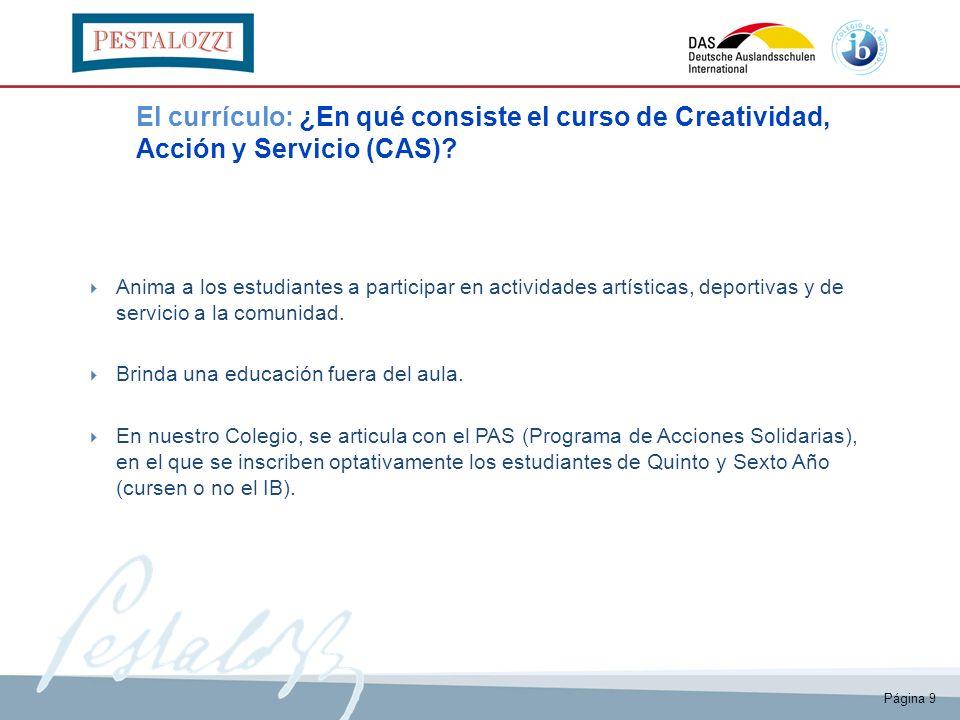 El currículo: ¿En qué consiste el curso de Creatividad, Acción y Servicio (CAS)
