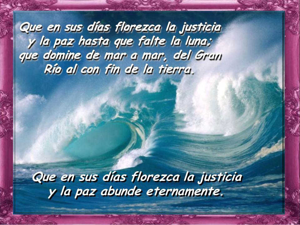 Que en sus días florezca la justicia y la paz abunde eternamente.