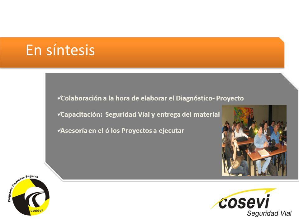 En síntesis Colaboración a la hora de elaborar el Diagnóstico- Proyecto. Capacitación: Seguridad Vial y entrega del material.