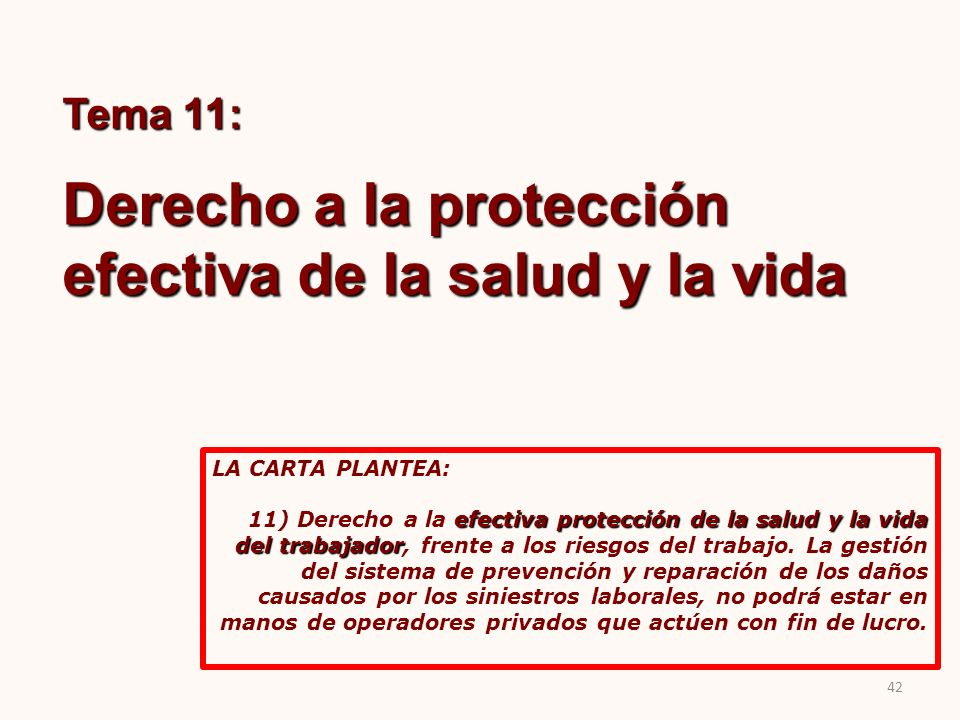 Derecho a la protección efectiva de la salud y la vida