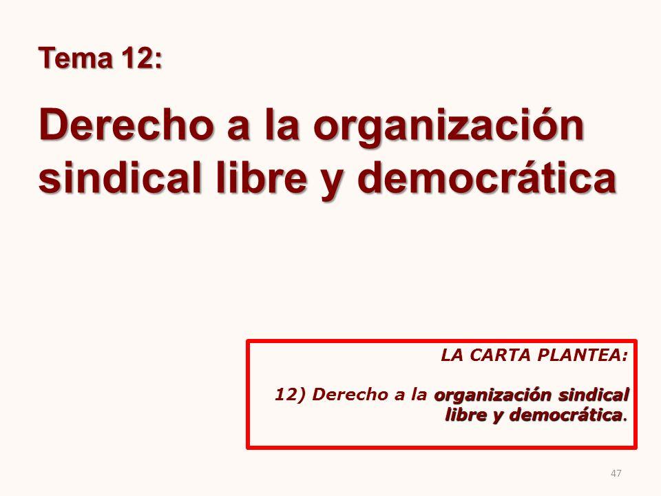 Derecho a la organización sindical libre y democrática