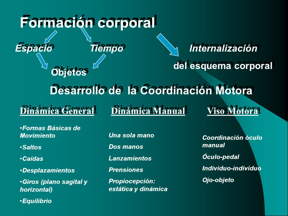 Desarrollo de la Coordinación Motora