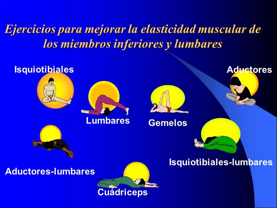 Ejercicios para mejorar la elasticidad muscular de los miembros inferiores y lumbares