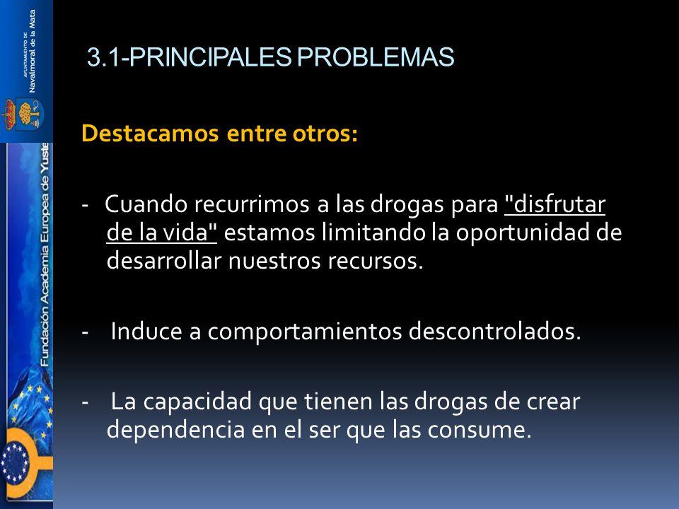 3.1-PRINCIPALES PROBLEMAS