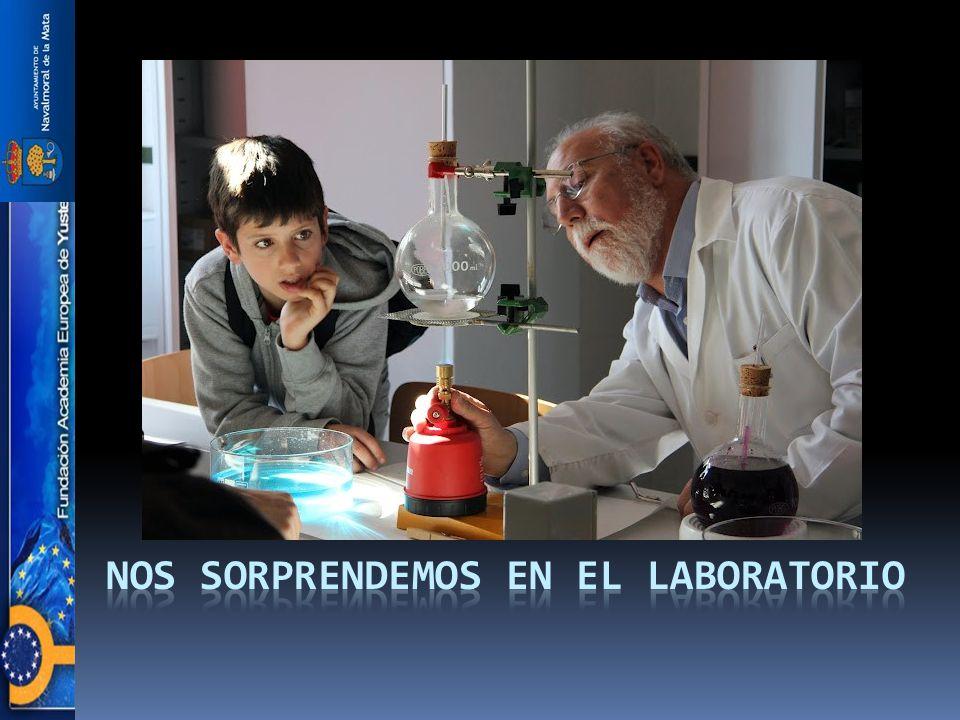 Nos sorprendemos en el laboratorio