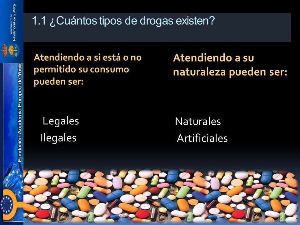 1.1 ¿Cuántos tipos de drogas existen