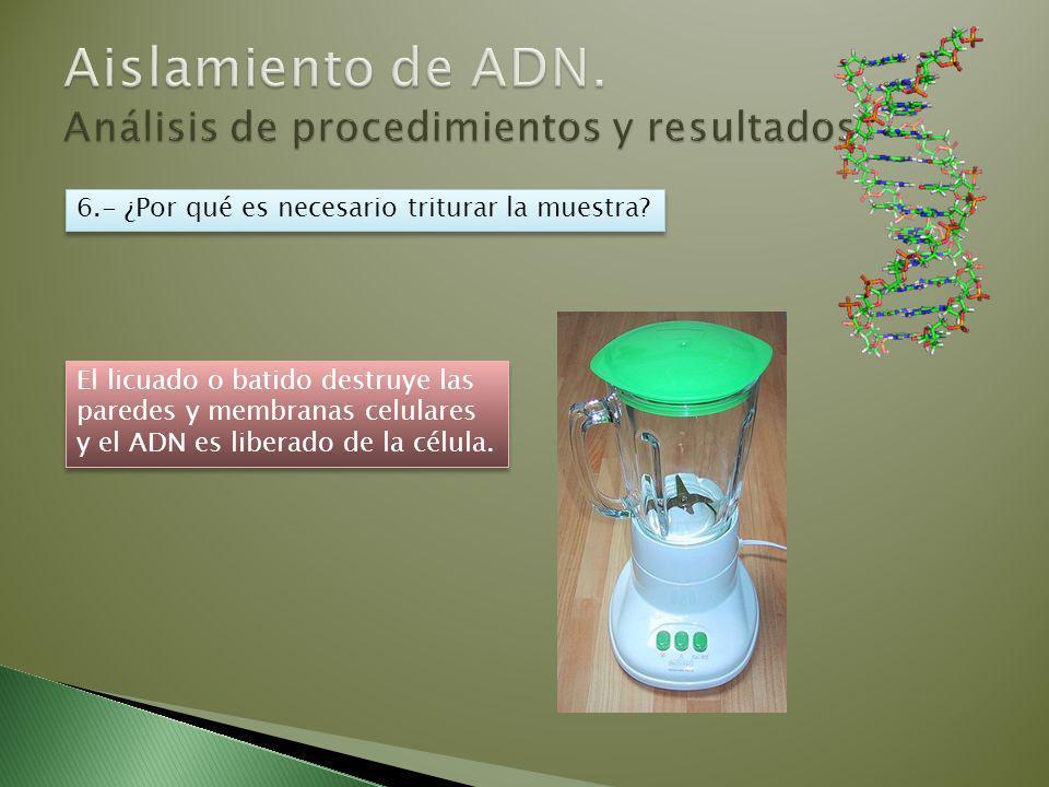 Aislamiento de ADN. Análisis de procedimientos y resultados