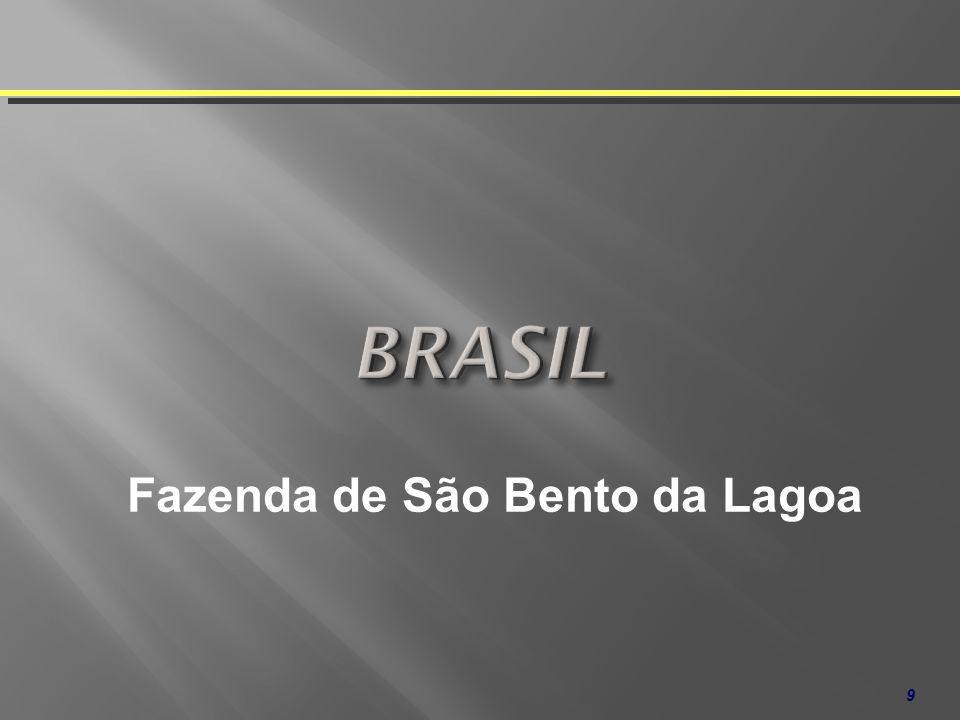 BRASIL Fazenda de São Bento da Lagoa