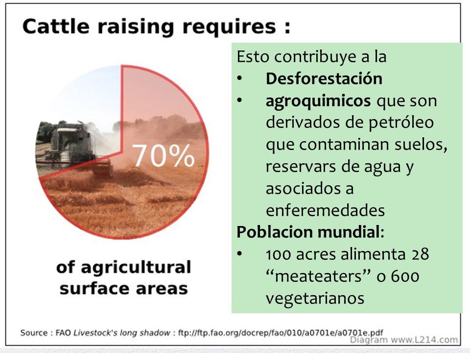 Esto contribuye a la Desforestación. agroquimicos que son derivados de petróleo que contaminan suelos, reservars de agua y asociados a enferemedades.