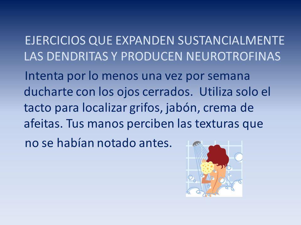 EJERCICIOS QUE EXPANDEN SUSTANCIALMENTE LAS DENDRITAS Y PRODUCEN NEUROTROFINAS