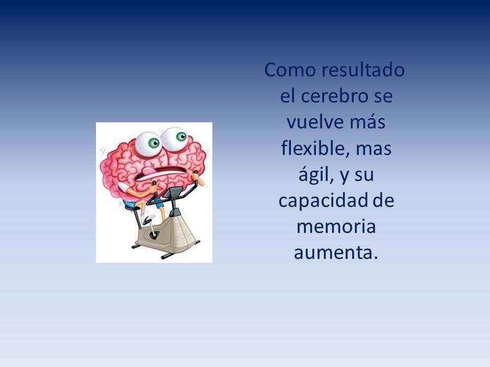 Como resultado el cerebro se vuelve más flexible, mas ágil, y su capacidad de memoria aumenta.