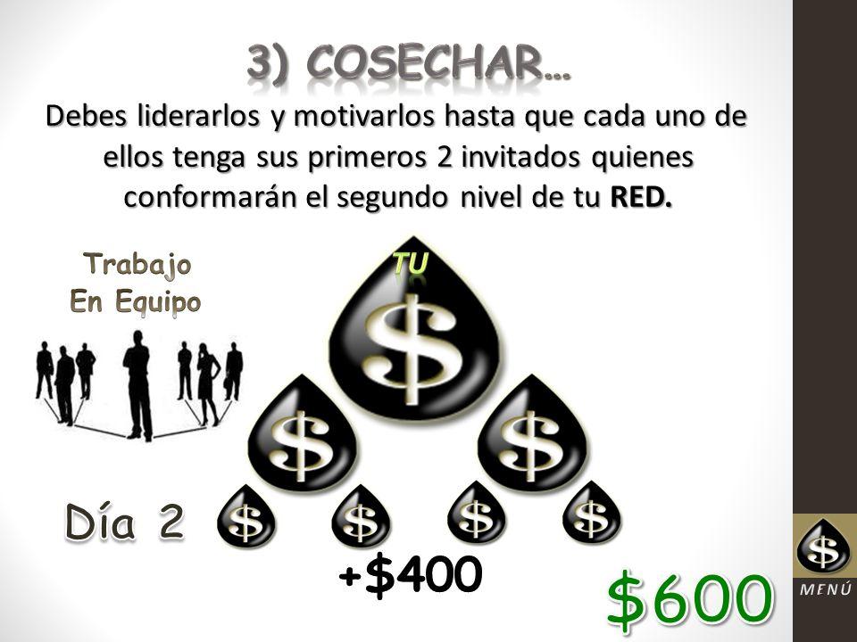 3) COSECHAR… Debes liderarlos y motivarlos hasta que cada uno de ellos tenga sus primeros 2 invitados quienes conformarán el segundo nivel de tu RED.