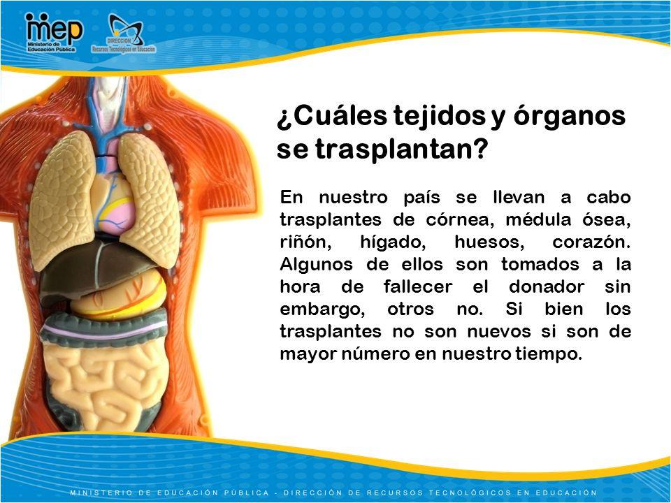 ¿Cuáles tejidos y órganos se trasplantan