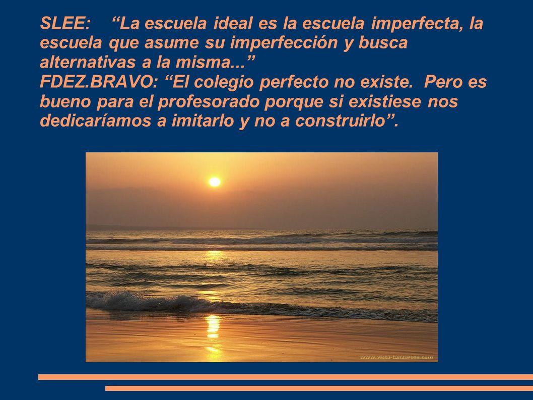 SLEE: La escuela ideal es la escuela imperfecta, la escuela que asume su imperfección y busca alternativas a la misma... FDEZ.BRAVO: El colegio perfecto no existe.