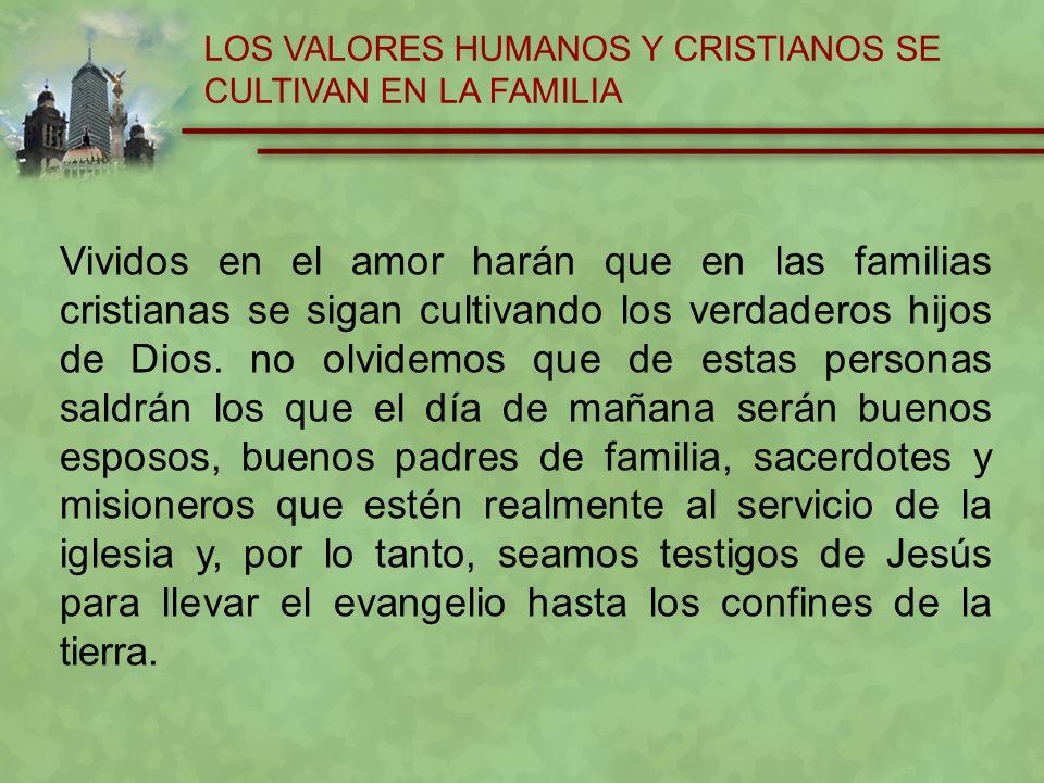 LOS VALORES HUMANOS Y CRISTIANOS SE CULTIVAN EN LA FAMILIA
