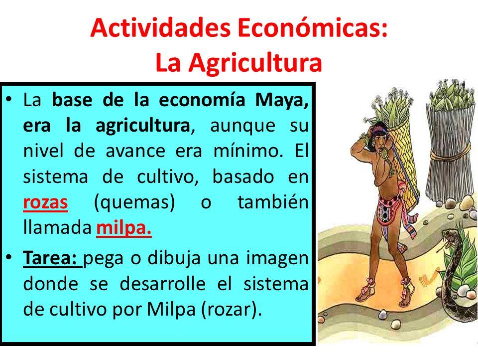 Actividades Económicas: La Agricultura