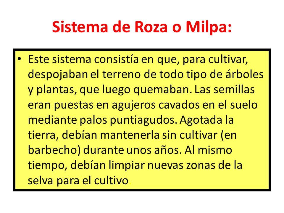 Sistema de Roza o Milpa: