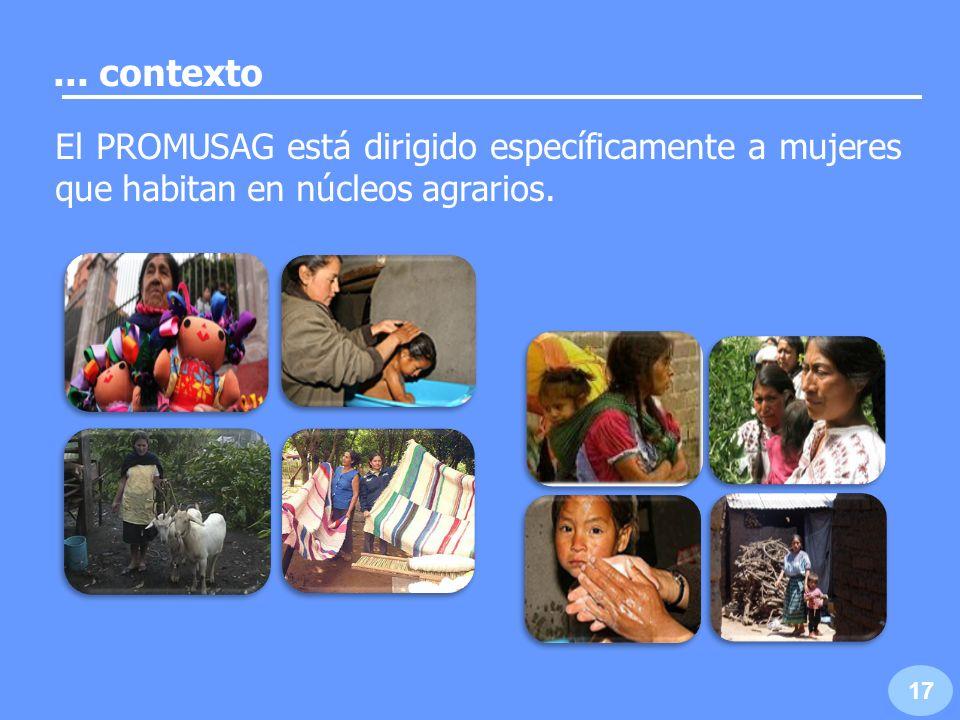 ... contexto El PROMUSAG está dirigido específicamente a mujeres que habitan en núcleos agrarios.