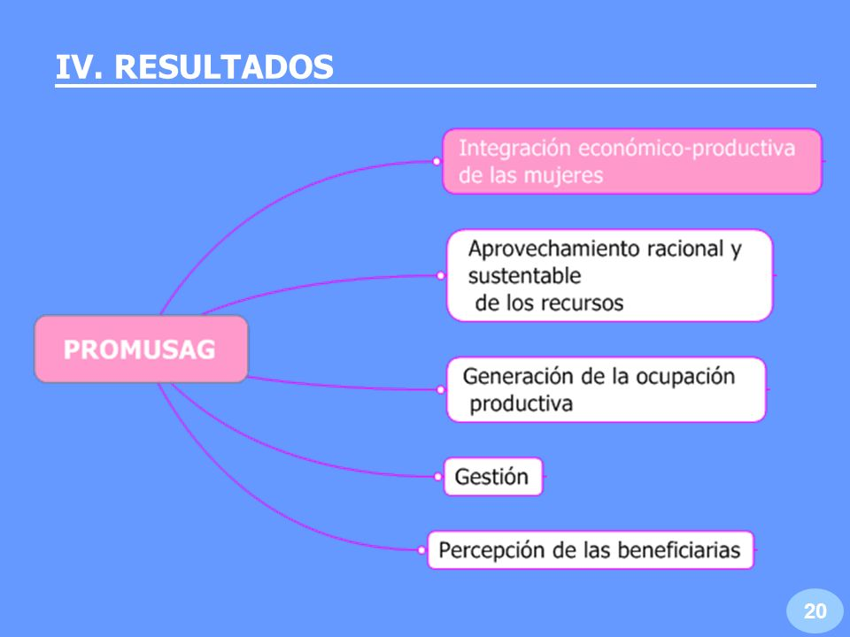 IV. RESULTADOS 20