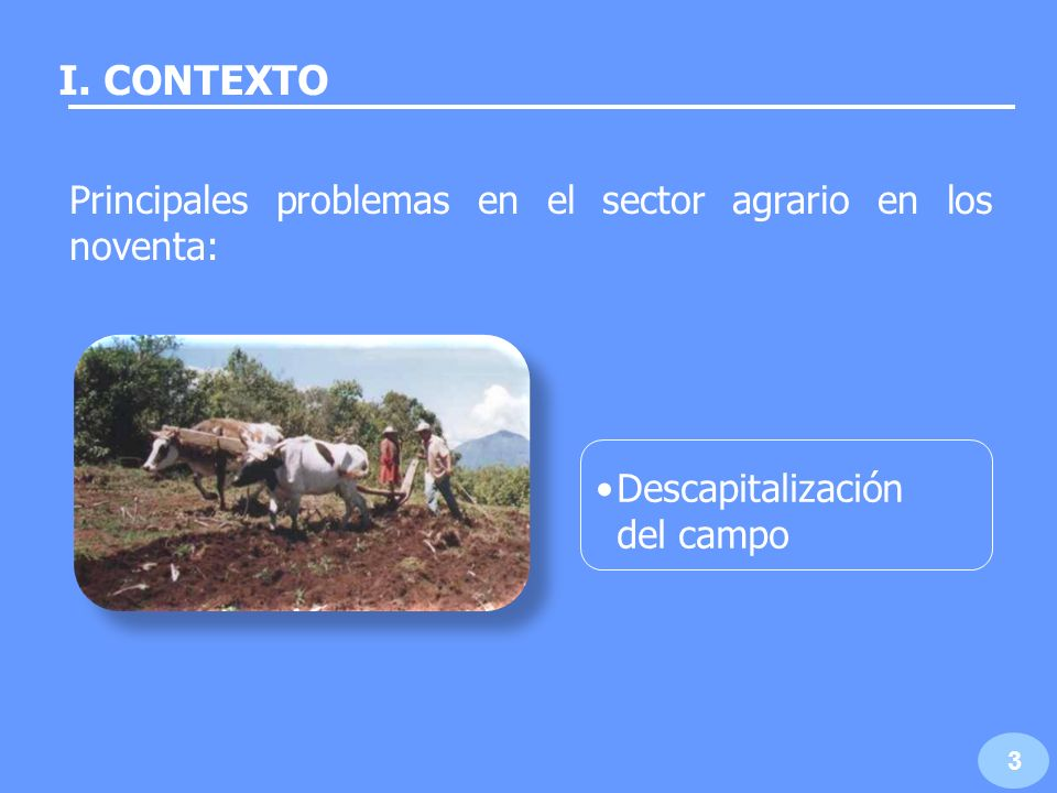 I. CONTEXTO Principales problemas en el sector agrario en los noventa: