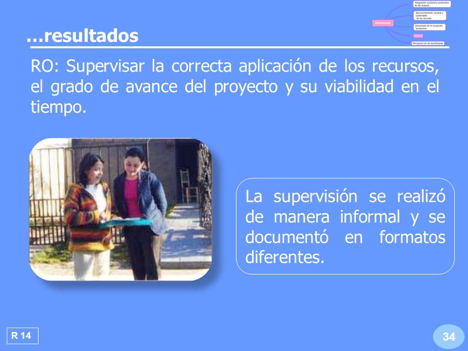 …resultados RO: Supervisar la correcta aplicación de los recursos, el grado de avance del proyecto y su viabilidad en el tiempo.