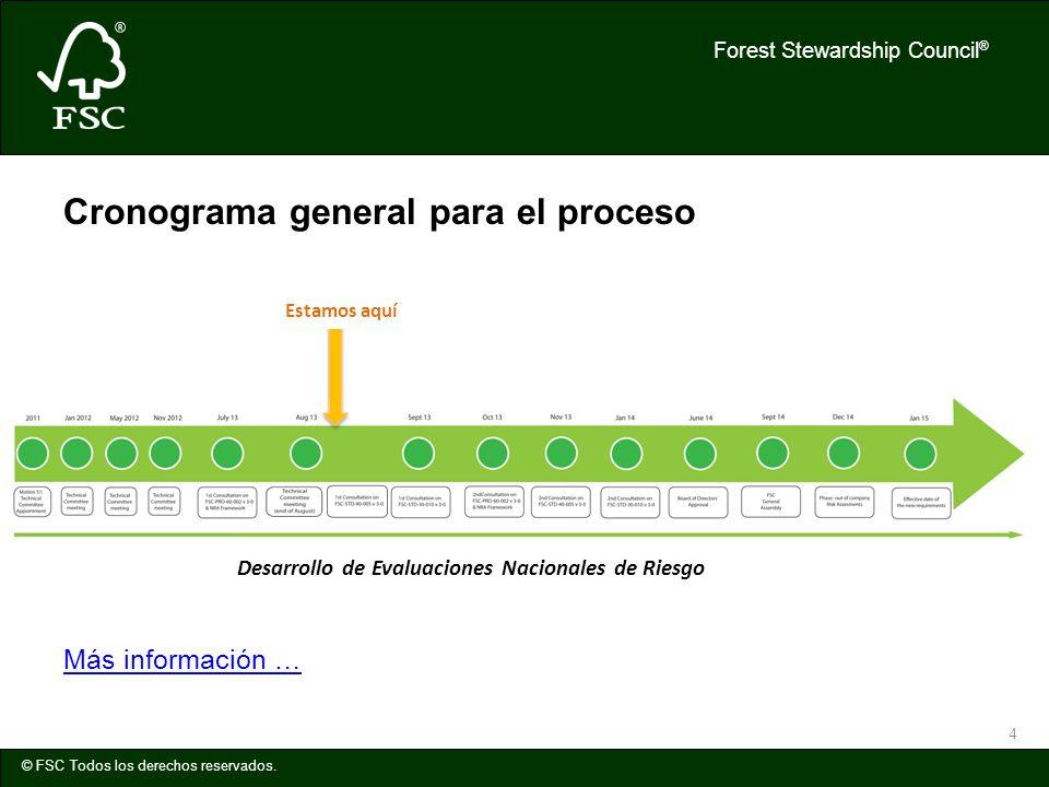 Cronograma general para el proceso
