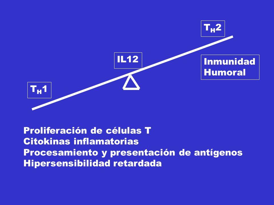 Proliferación de células T Citokinas inflamatorias
