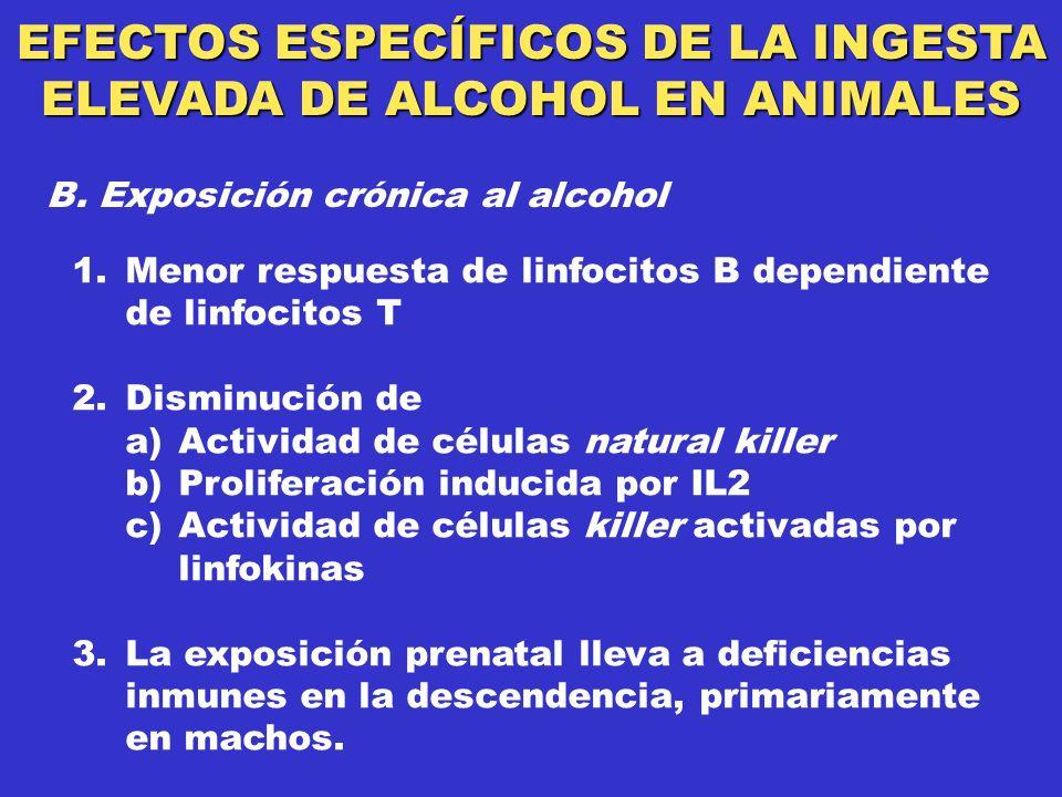 EFECTOS ESPECÍFICOS DE LA INGESTA ELEVADA DE ALCOHOL EN ANIMALES