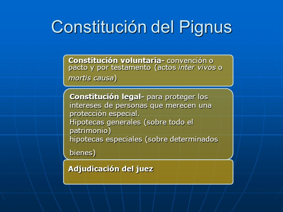 Constitución del Pignus