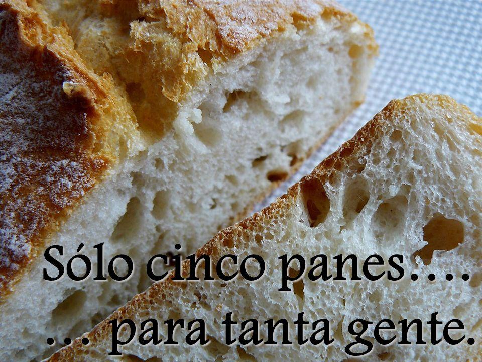Sólo cinco panes…. … para tanta gente.