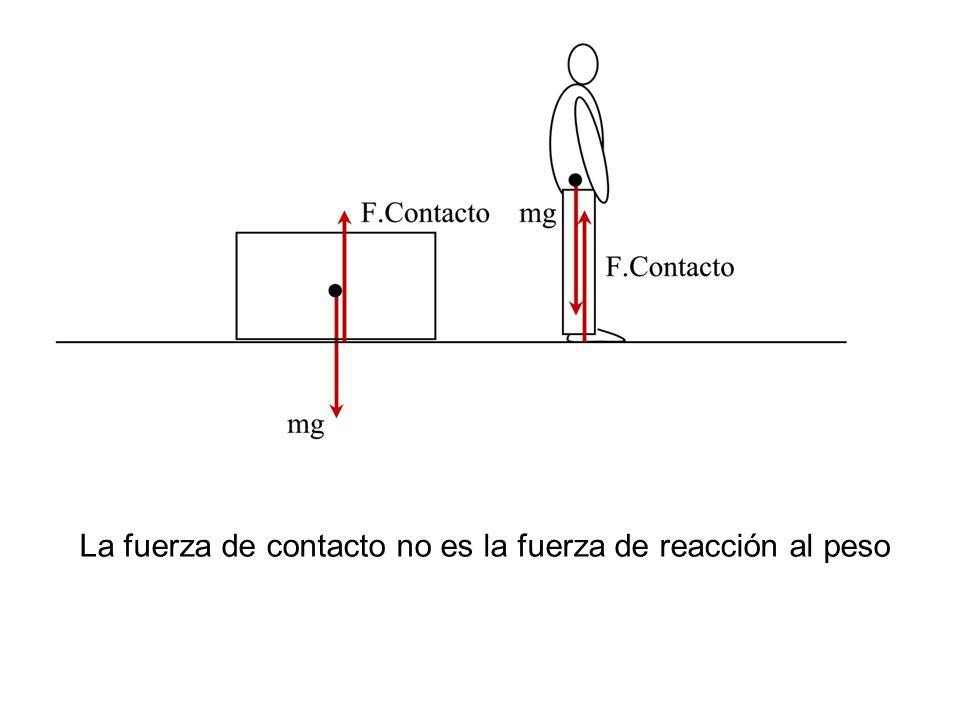 La fuerza de contacto no es la fuerza de reacción al peso