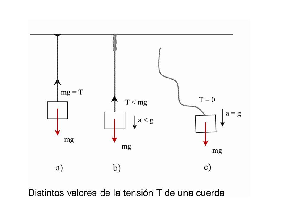 Distintos valores de la tensión T de una cuerda