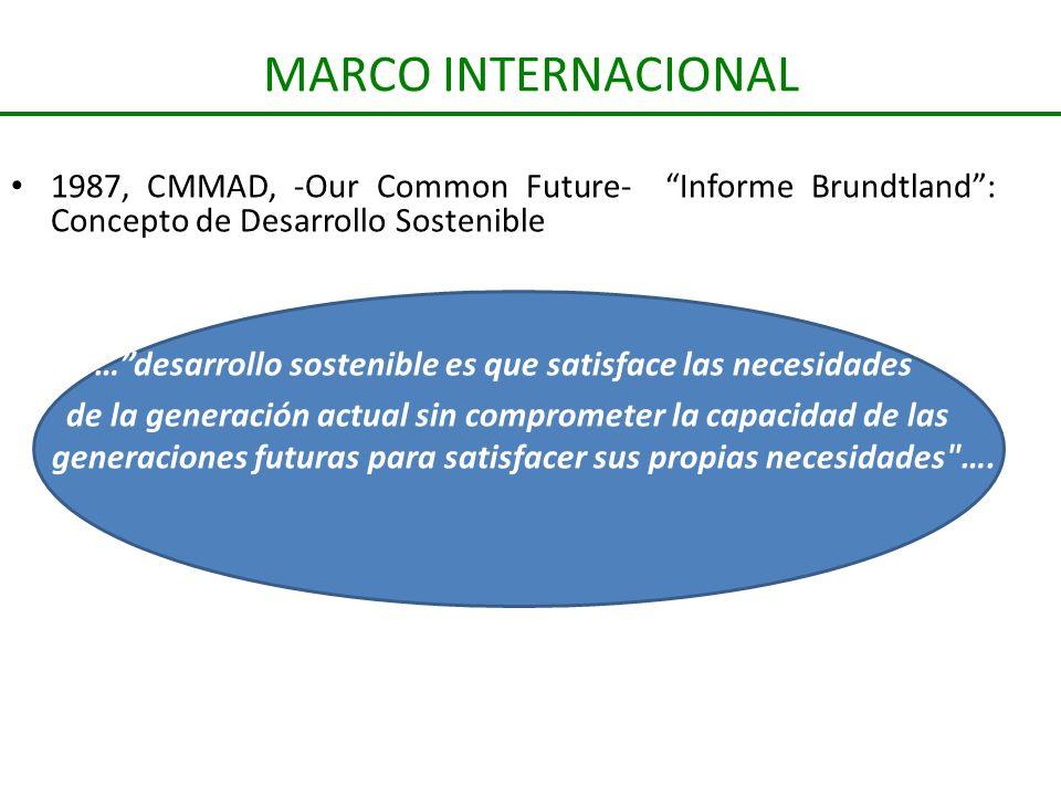 … desarrollo sostenible es que satisface las necesidades
