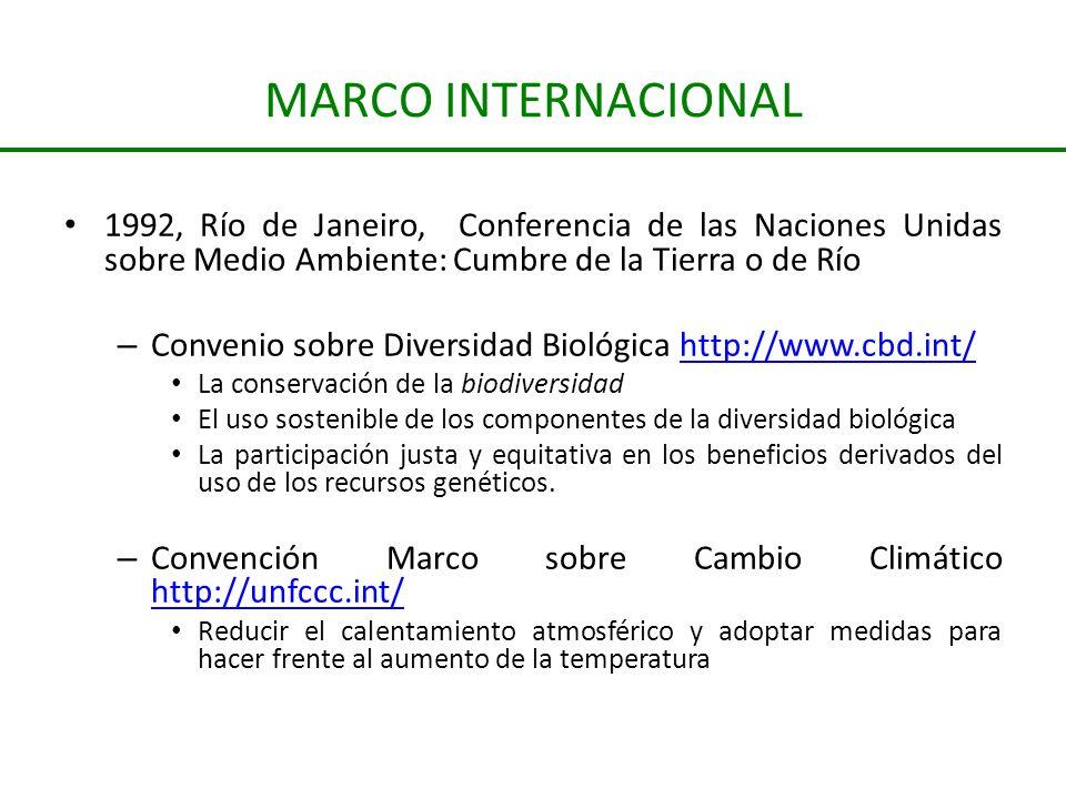 MARCO INTERNACIONAL 1992, Río de Janeiro, Conferencia de las Naciones Unidas sobre Medio Ambiente: Cumbre de la Tierra o de Río.