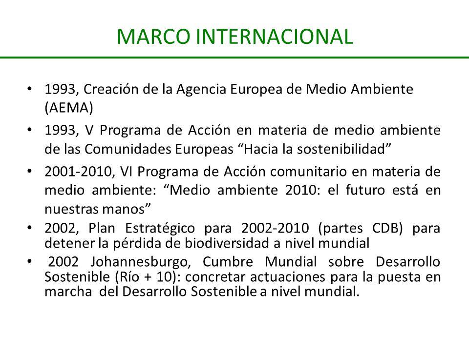 MARCO INTERNACIONAL 1993, Creación de la Agencia Europea de Medio Ambiente (AEMA)
