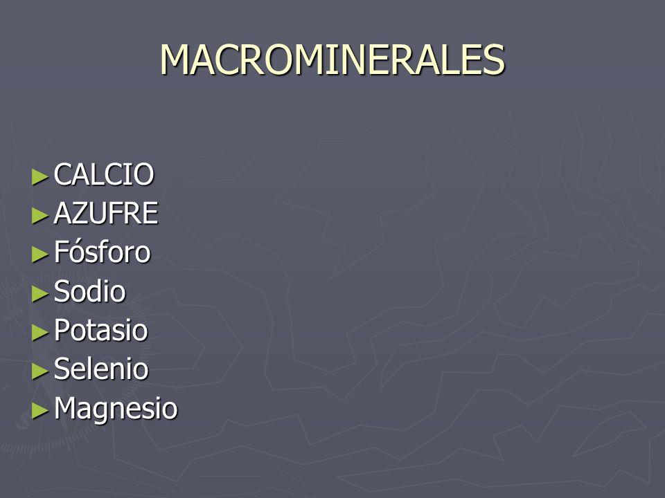 MACROMINERALES CALCIO AZUFRE Fósforo Sodio Potasio Selenio Magnesio