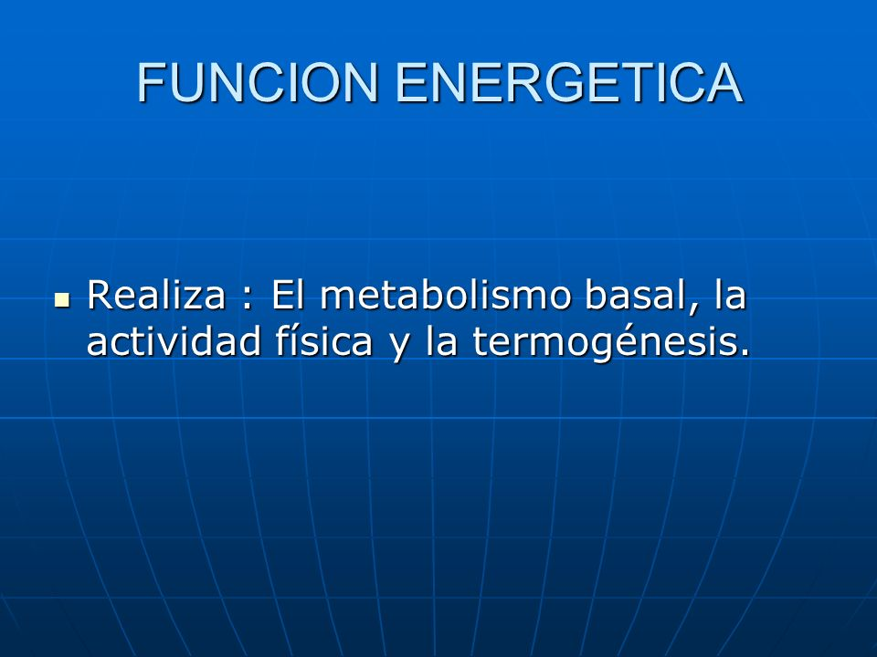 FUNCION ENERGETICA Realiza : El metabolismo basal, la actividad física y la termogénesis.