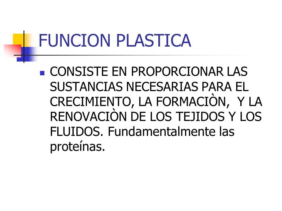 FUNCION PLASTICA