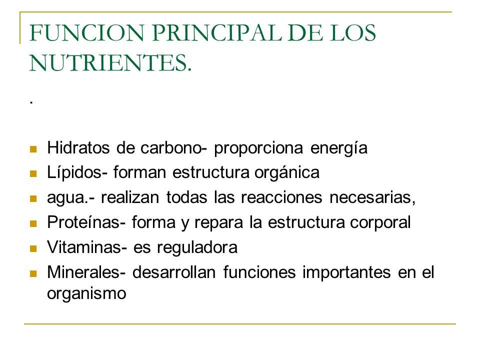 FUNCION PRINCIPAL DE LOS NUTRIENTES.