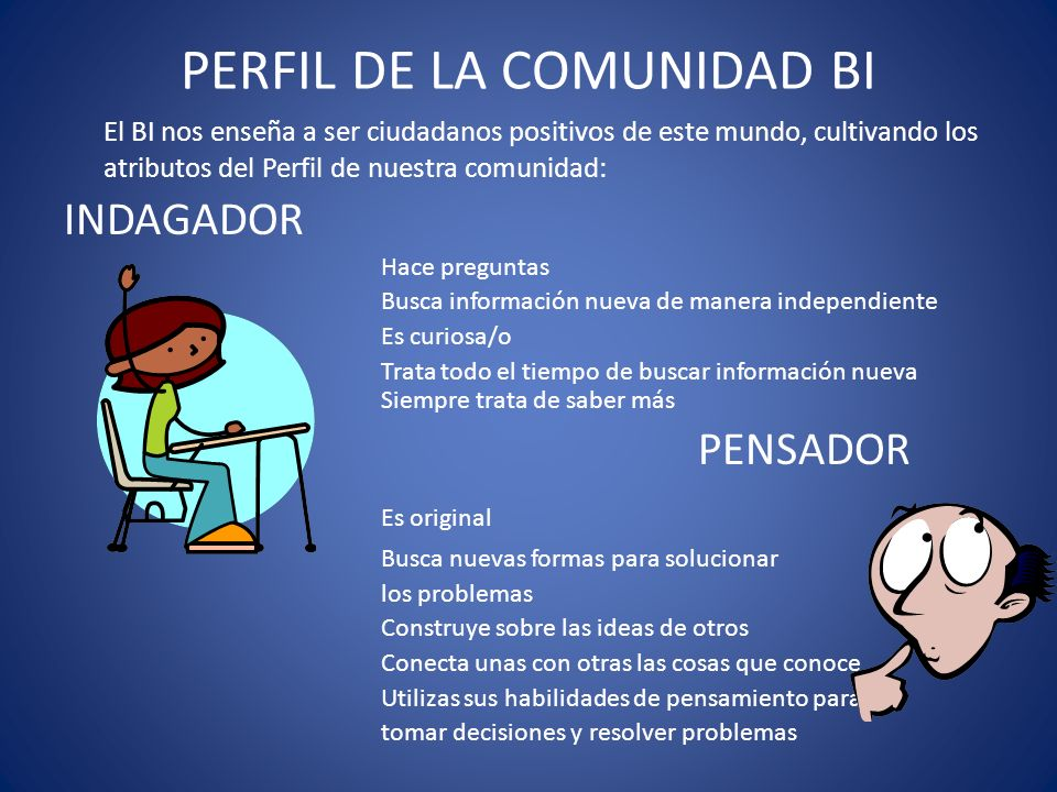 PERFIL DE LA COMUNIDAD BI
