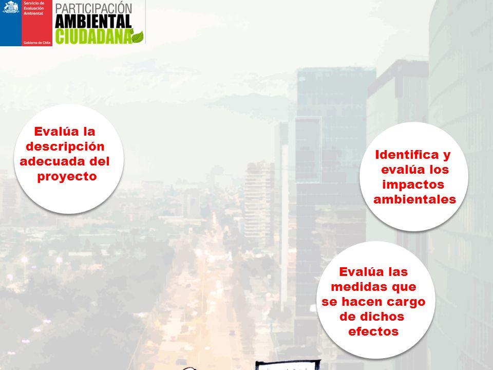 ¿QUÉ ES EL SISTEMA DE EVALUACIÓN DE IMPACTO AMBIENTAL