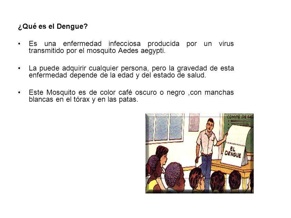 ¿Qué es el Dengue Es una enfermedad infecciosa producida por un virus transmitido por el mosquito Aedes aegypti.