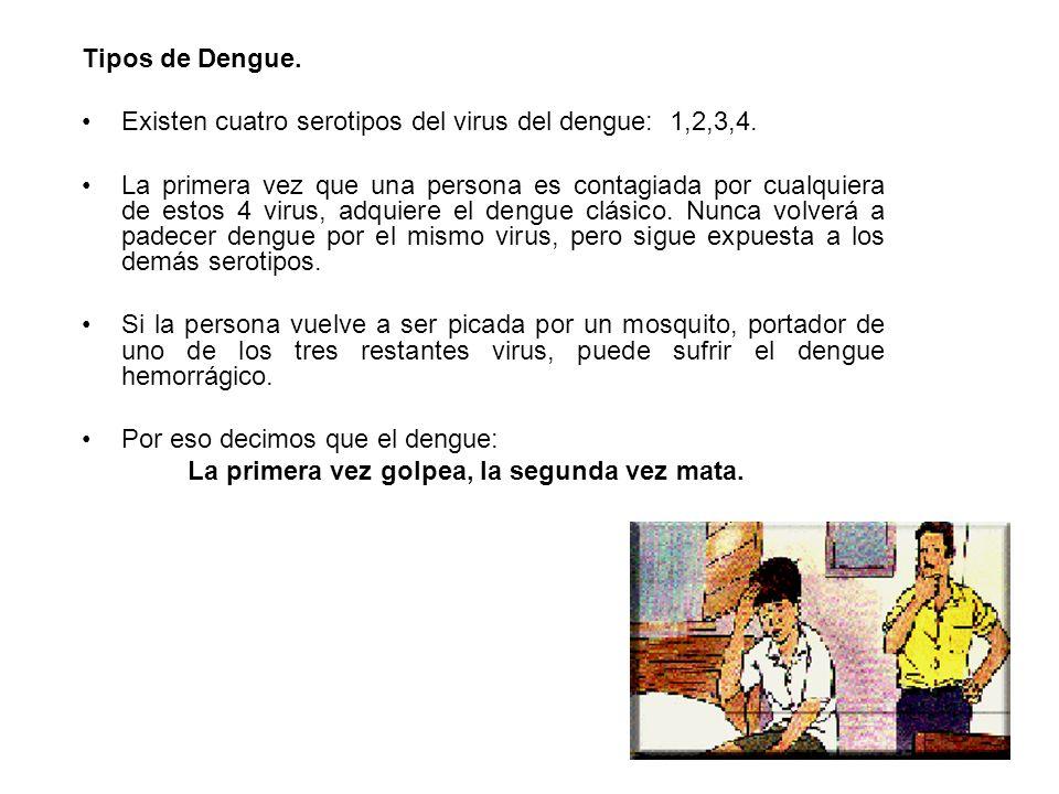Tipos de Dengue. Existen cuatro serotipos del virus del dengue: 1,2,3,4.