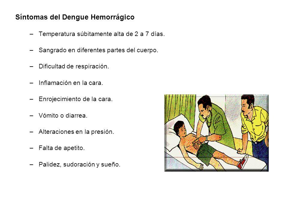 Síntomas del Dengue Hemorrágico