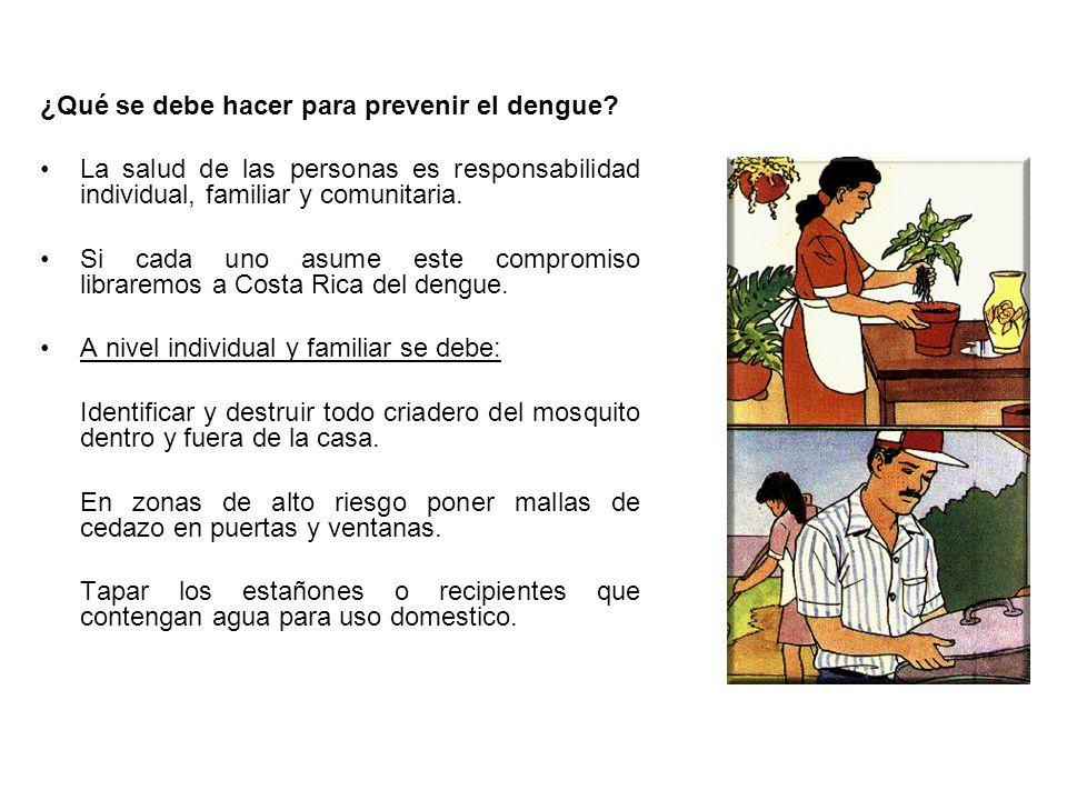 ¿Qué se debe hacer para prevenir el dengue